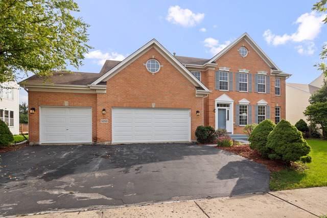 5255 Shotkoski Drive, Hoffman Estates, IL 60192 (MLS #10616616) :: Ani Real Estate