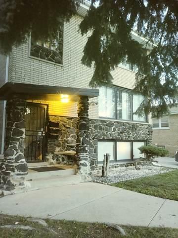 393 Yates Avenue, Calumet City, IL 60409 (MLS #10616650) :: Property Consultants Realty