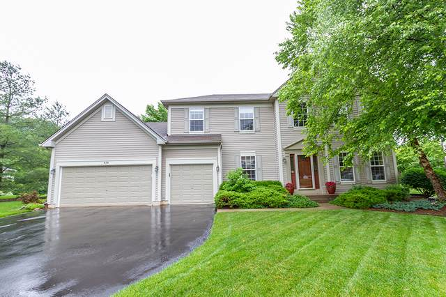 424 Reserve Drive, Crystal Lake, IL 60012 (MLS #10616790) :: BN Homes Group