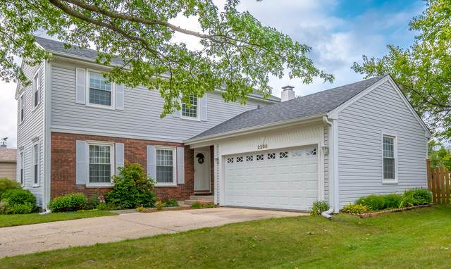 2208 Romm Court, Schaumburg, IL 60194 (MLS #10616840) :: The Wexler Group at Keller Williams Preferred Realty