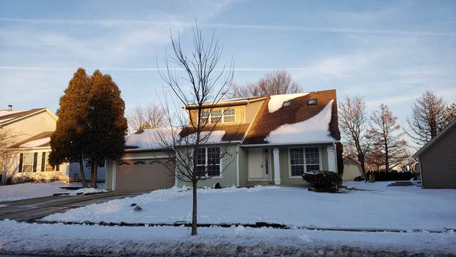 417 Tebay Place, Schaumburg, IL 60193 (MLS #10617074) :: The Wexler Group at Keller Williams Preferred Realty
