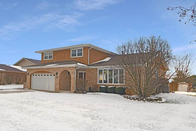 15356 Weather Vane Lane, Homer Glen, IL 60491 (MLS #10617251) :: Baz Realty Network | Keller Williams Elite