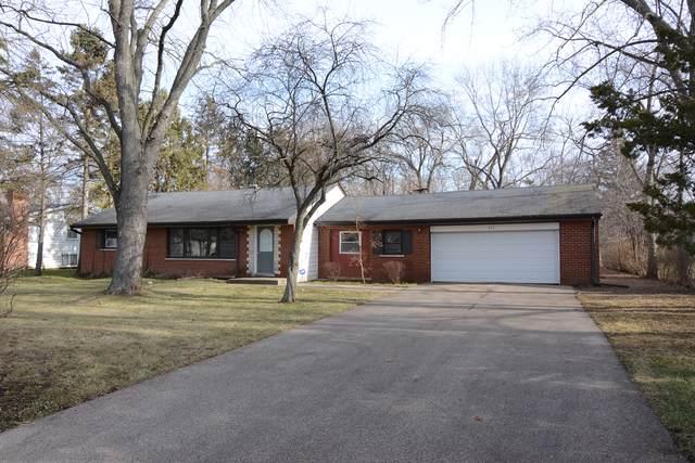 927 N Maple Avenue, Palatine, IL 60067 (MLS #10617389) :: Lewke Partners
