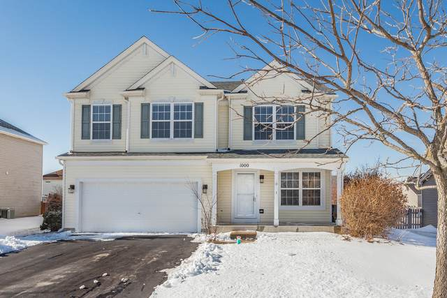 1000 Mackenzie Drive, Antioch, IL 60002 (MLS #10617495) :: The Wexler Group at Keller Williams Preferred Realty