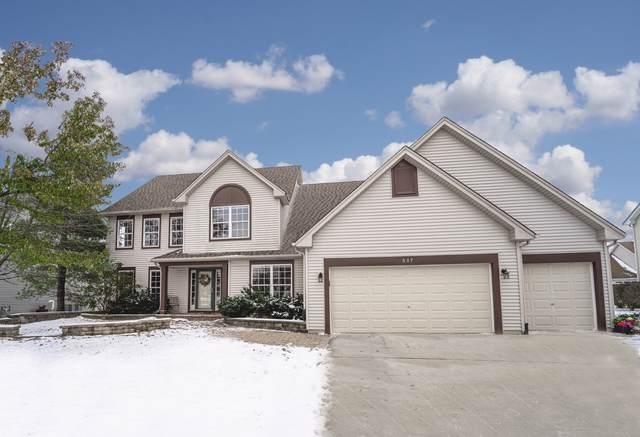 507 Clearwater Lane, Oswego, IL 60543 (MLS #10617498) :: The Dena Furlow Team - Keller Williams Realty