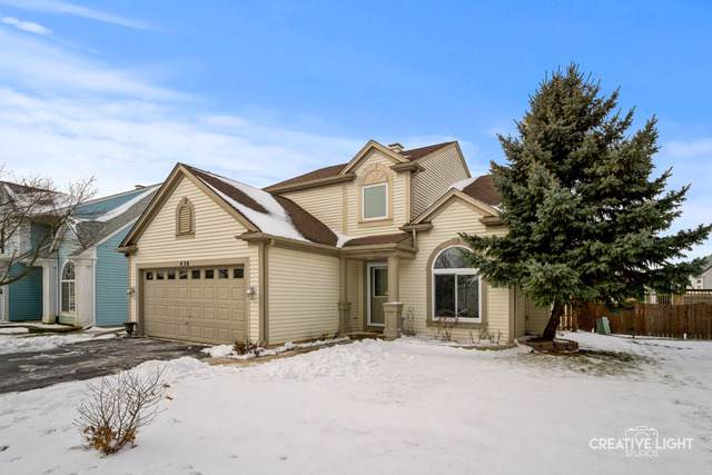 430 Persimmon Lane, Bartlett, IL 60103 (MLS #10617508) :: Suburban Life Realty