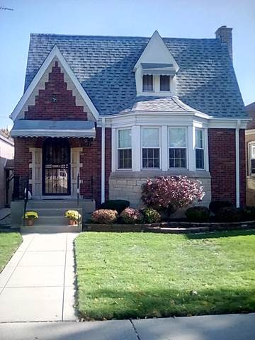 3223 N Newland Avenue, Chicago, IL 60634 (MLS #10617743) :: Ani Real Estate