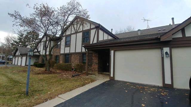 226 Scarsdale Court D2, Schaumburg, IL 60193 (MLS #10617855) :: Littlefield Group