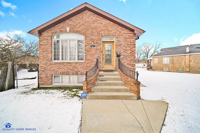 7632 S Chappel Avenue, Chicago, IL 60649 (MLS #10618022) :: Property Consultants Realty