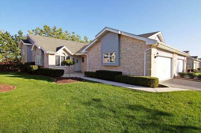16225 Lake Villa Avenue, Tinley Park, IL 60477 (MLS #10618163) :: The Wexler Group at Keller Williams Preferred Realty
