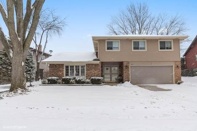 429 Cottonwood Lane, Schaumburg, IL 60193 (MLS #10618415) :: The Wexler Group at Keller Williams Preferred Realty