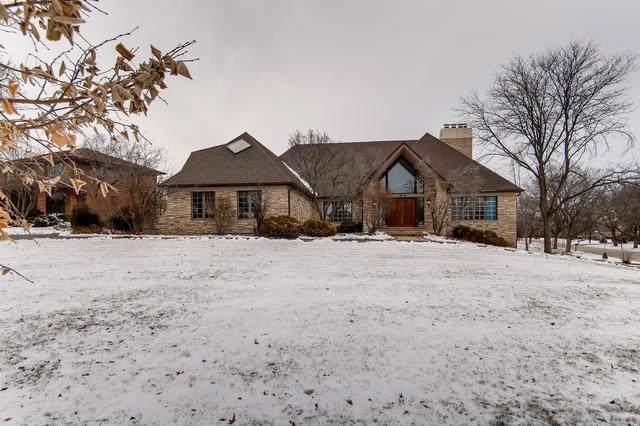 158 Tomlin Circle, Burr Ridge, IL 60527 (MLS #10618690) :: Baz Realty Network | Keller Williams Elite