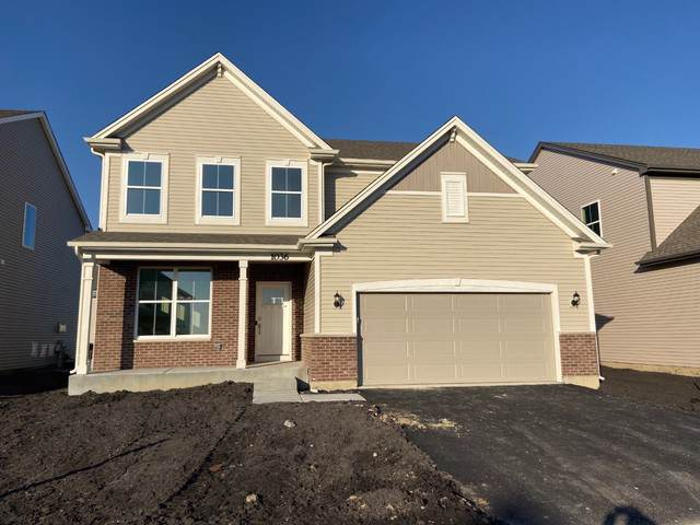 1036 Sunflower Street, South Elgin, IL 60177 (MLS #10618865) :: Angela Walker Homes Real Estate Group