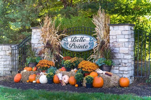 9604 Emily Lane, Union, IL 60180 (MLS #10618891) :: Littlefield Group