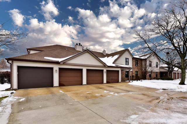 894 Stradford Circle 17B2, Buffalo Grove, IL 60089 (MLS #10619012) :: Property Consultants Realty