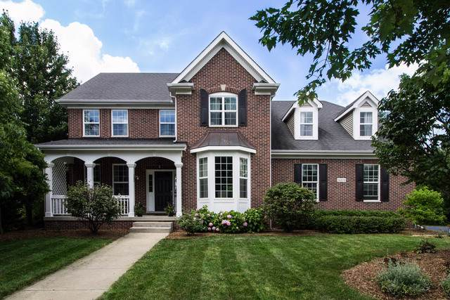 16109 Hometown Drive, Plainfield, IL 60586 (MLS #10619018) :: Touchstone Group