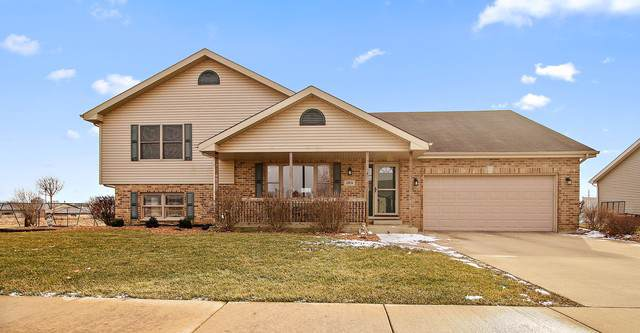 269 Park Street, Momence, IL 60954 (MLS #10619051) :: Property Consultants Realty