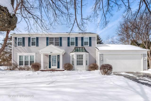 230 Hilltop Lane, Sleepy Hollow, IL 60118 (MLS #10619121) :: BN Homes Group