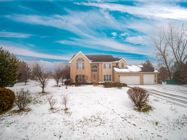 12241 Saddlebrook Lane, Lemont, IL 60439 (MLS #10619428) :: The Mattz Mega Group