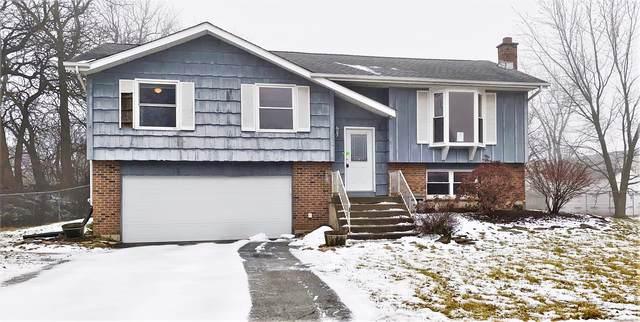 7531 W Benton Drive, Frankfort, IL 60423 (MLS #10619459) :: Helen Oliveri Real Estate