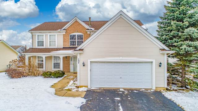 137 S Palmer Drive, Bolingbrook, IL 60490 (MLS #10619511) :: BN Homes Group
