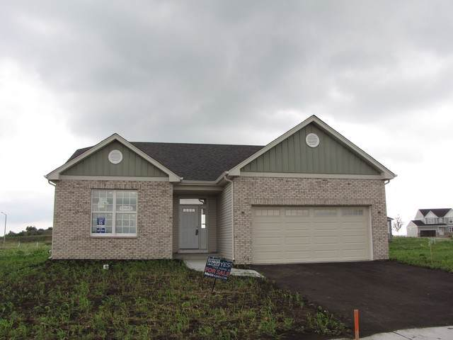 13653 Palmetto Drive, Plainfield, IL 60544 (MLS #10619613) :: Berkshire Hathaway HomeServices Snyder Real Estate
