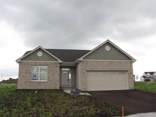 13653 Palmetto Drive, Plainfield, IL 60544 (MLS #10619613) :: The Mattz Mega Group