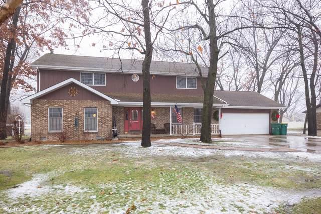 390 S Comet Drive, Braidwood, IL 60408 (MLS #10619634) :: Ani Real Estate