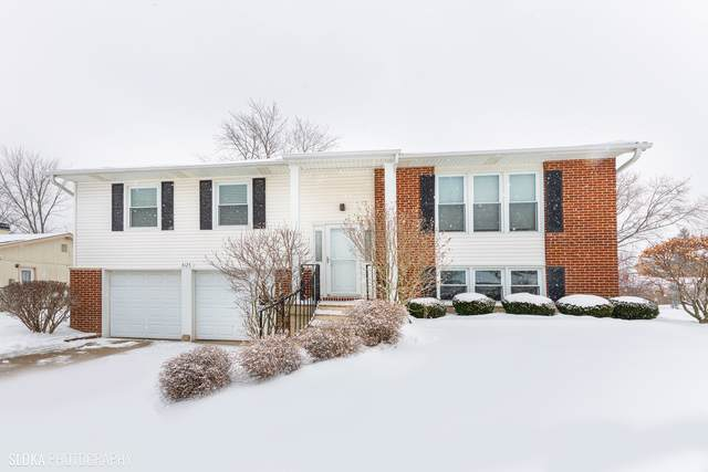 4125 Mason Drive, Hoffman Estates, IL 60192 (MLS #10619687) :: The Wexler Group at Keller Williams Preferred Realty