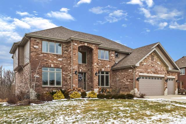 22610 Nature Creek Circle, Frankfort, IL 60423 (MLS #10619723) :: Angela Walker Homes Real Estate Group
