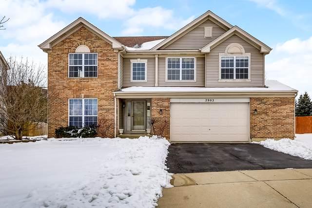 2903 W Bridleway Court, Carpentersville, IL 60110 (MLS #10619778) :: BN Homes Group