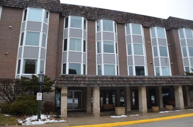 300 Thames Parkway 2H, Park Ridge, IL 60068 (MLS #10619951) :: The Mattz Mega Group