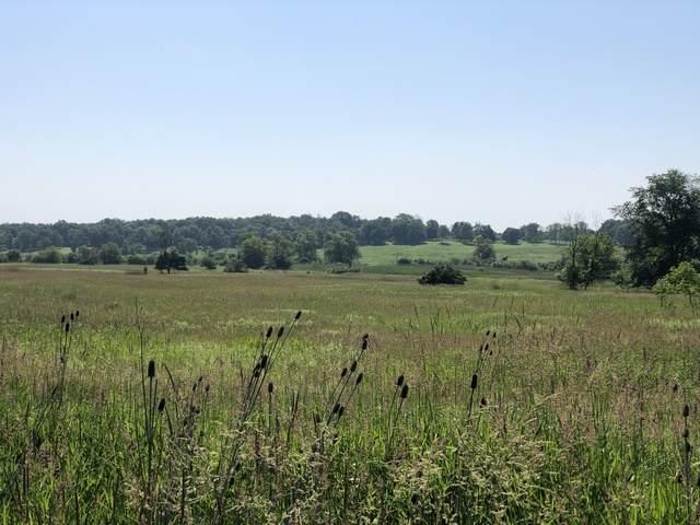 600 Berron Lane, Barrington Hills, IL 60010 (MLS #10620118) :: Angela Walker Homes Real Estate Group