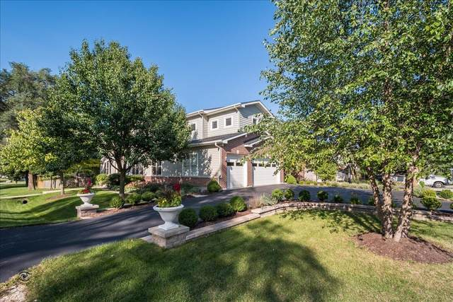 6645 Carpenter Street, Downers Grove, IL 60516 (MLS #10620288) :: Berkshire Hathaway HomeServices Snyder Real Estate