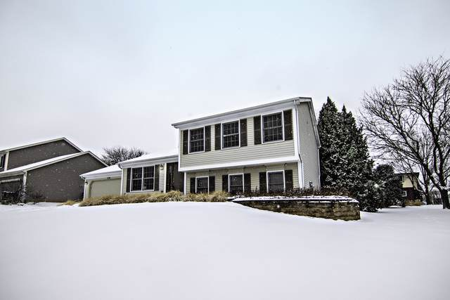 1170 Waterford Cut, Crystal Lake, IL 60014 (MLS #10620355) :: Baz Realty Network | Keller Williams Elite