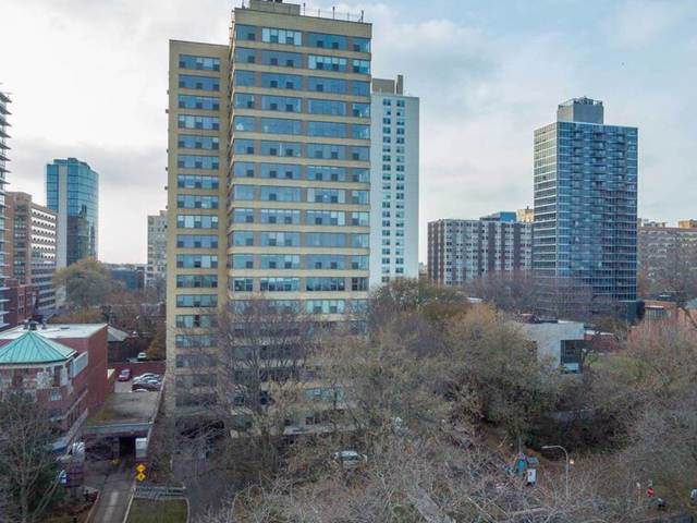 2970 N Lake Shore Drive 19F, Chicago, IL 60657 (MLS #10620451) :: Property Consultants Realty