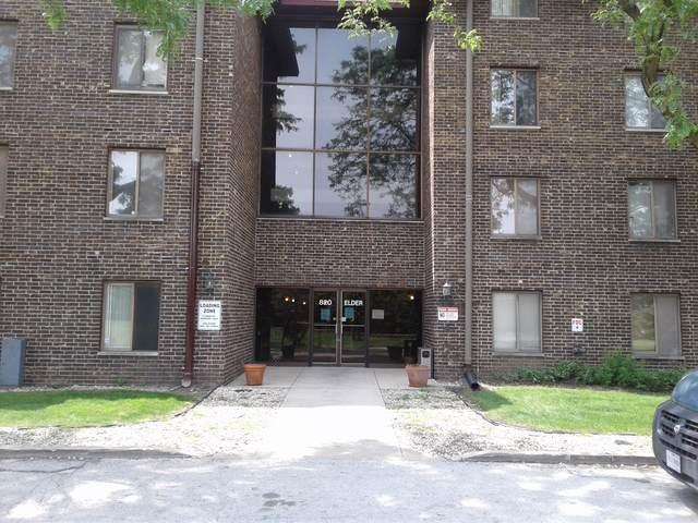 820 Elder Road C207, Homewood, IL 60430 (MLS #10620621) :: The Wexler Group at Keller Williams Preferred Realty