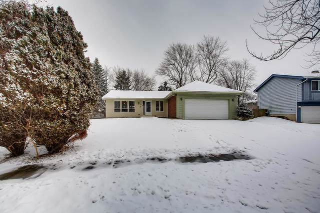 222 Flagstaff Drive, Bolingbrook, IL 60440 (MLS #10620766) :: The Wexler Group at Keller Williams Preferred Realty