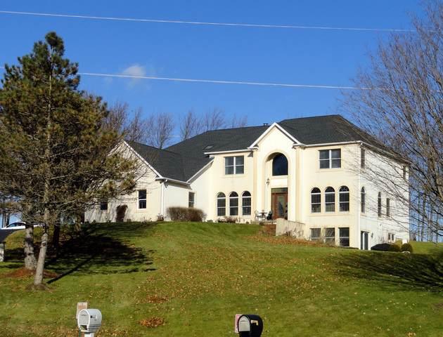 9N265 Cross Creek Court, Elgin, IL 60124 (MLS #10621057) :: Suburban Life Realty