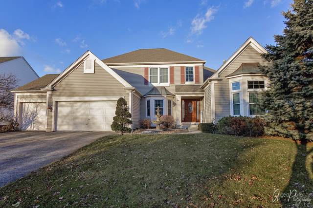 1178 Williamsburg Circle, Grayslake, IL 60030 (MLS #10621128) :: Property Consultants Realty