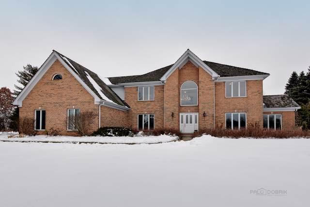6601 Cobblestone Lane, Long Grove, IL 60047 (MLS #10621239) :: Suburban Life Realty