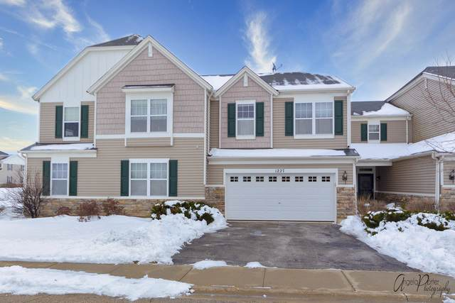 1227 Anthony Court, Antioch, IL 60002 (MLS #10621555) :: The Wexler Group at Keller Williams Preferred Realty