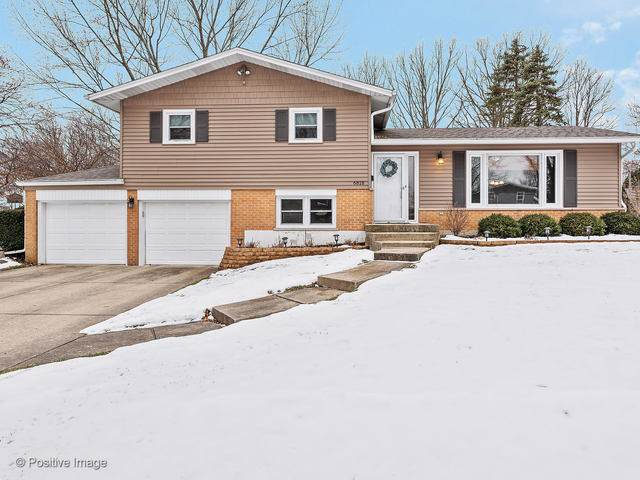 6818 Valley View Drive, Downers Grove, IL 60516 (MLS #10622562) :: Ryan Dallas Real Estate
