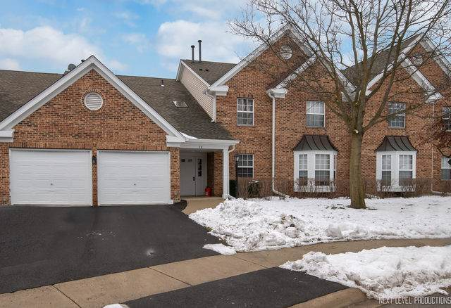 28 Ashburn Court V1, Schaumburg, IL 60193 (MLS #10625279) :: Ani Real Estate