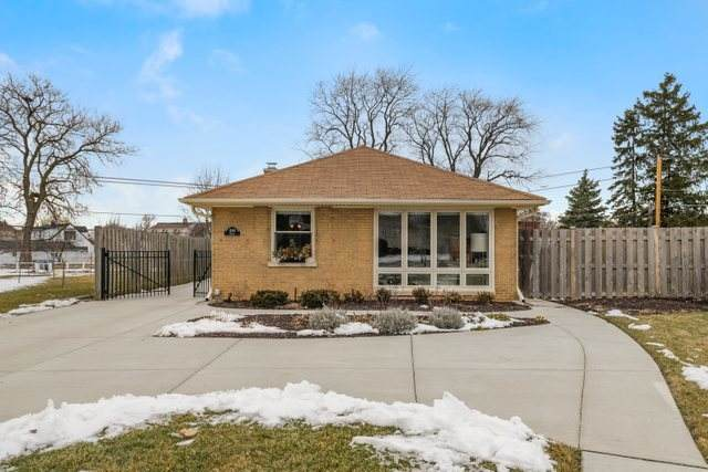 8146 W Strong Street, Norridge, IL 60706 (MLS #10625470) :: The Perotti Group | Compass Real Estate