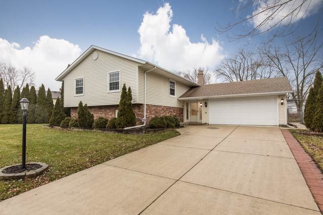 38 Woodridge Lane, Streamwood, IL 60107 (MLS #10625966) :: Ani Real Estate