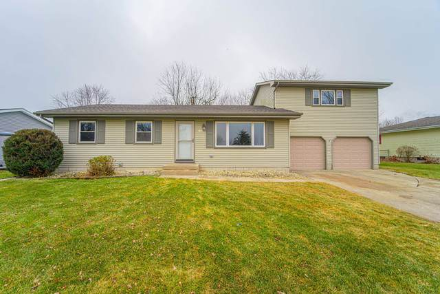 258 Navajo Trail, Lowell, IN 46356 (MLS #10626059) :: BN Homes Group