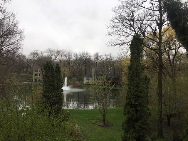 Lot 152 Whiting Drive, Mchenry, IL 60050 (MLS #10626438) :: BN Homes Group