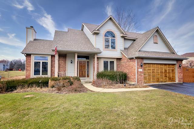 10815 Huron Drive, Spring Grove, IL 60081 (MLS #10627168) :: Property Consultants Realty