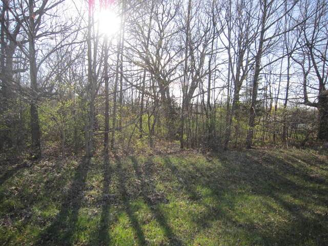 Lot 296 Avenue, Trevor, WI 53179 (MLS #10627250) :: Suburban Life Realty